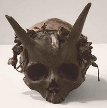 hornedhuman