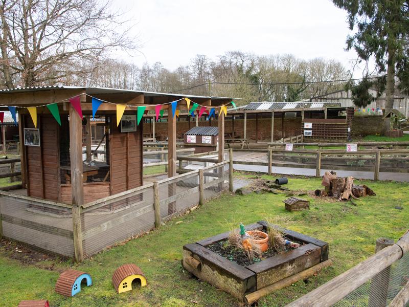 Godstone Farm Day Nursery Carousel 8