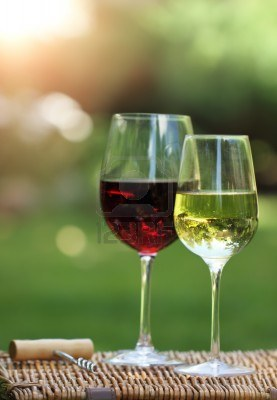 12809695-two-glasses-of-the-white-and-red-wine-in-the-garden