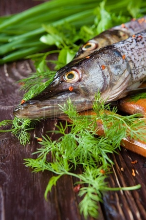 19417816-raw-fish-pike-and-greens-closeup-food
