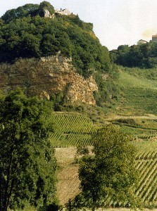 446px-Jura_landscape_with_vineyards