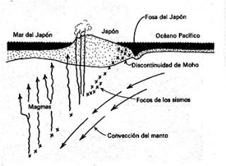 Gonzalo Duque-Escobar: 1/06/13