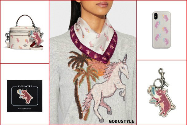 coach, fashion, chinese new year, pig year, capsule collection, shopping, 2019, collection, look, style