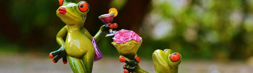 frog with roses