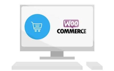 Środowisko działania sklepu internetowego