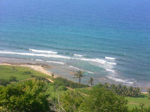 beach in Utila