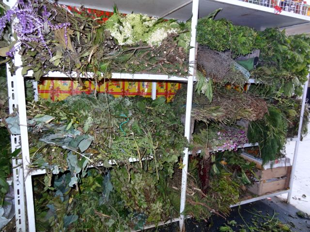 herbs used for limpia