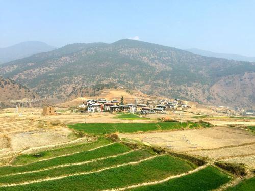 punakha bhutan scenery