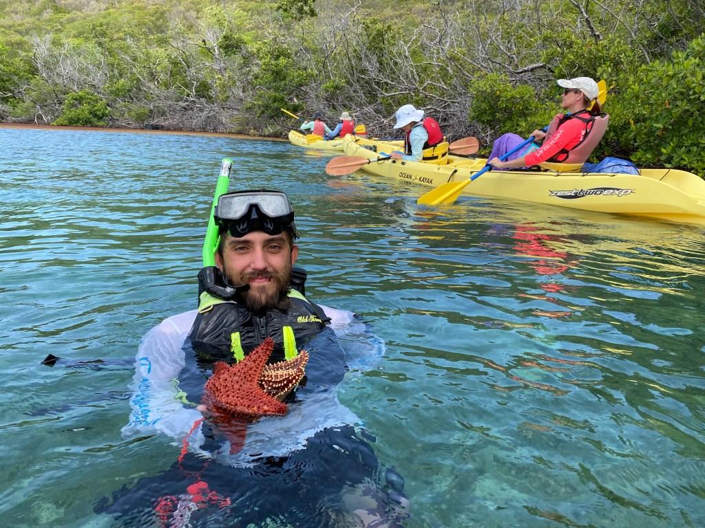 starfish in Caribbean