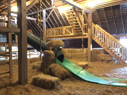 Slide, rope swing and play area inside barn!