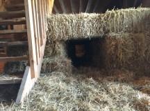 straw tunnel
