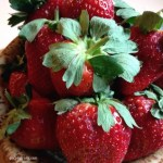 Florida Strawberry Festival: Small Town Feel, Big Fun With Friends