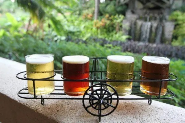 Top 9 Food and Wine Events in Orlando in June with www.GoEpicurista.com
