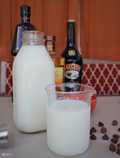 Boozy Hazelnut Frozen Hot Chocolate #SundaySupper #JuneDairyMonth #FloridaMilk GoEpicurista.com