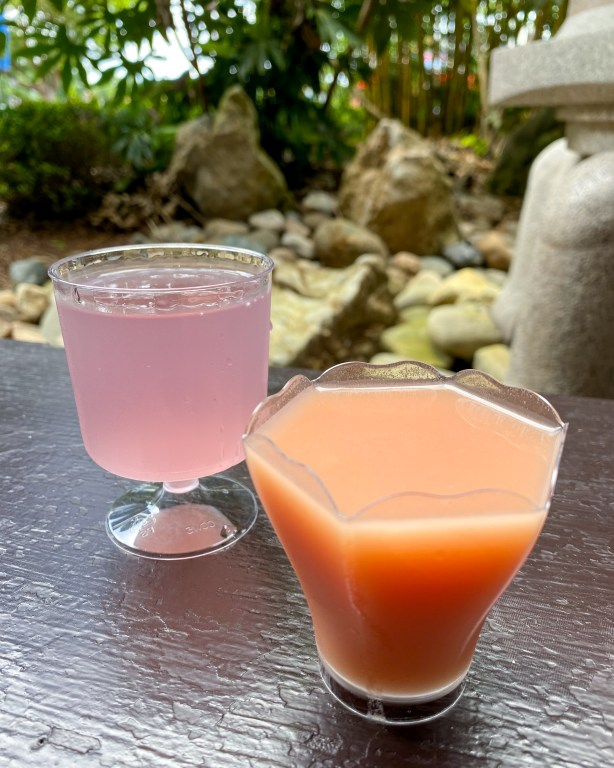 Taste of Epcot Food and Wine Festival guide drinks in Japan