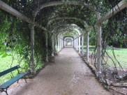 Botanical Gardens of Rio de Janeiro