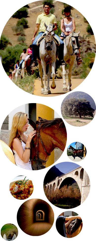 Rutas-a-caballo-via-verde-collage