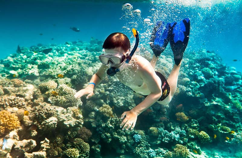 Snorkeling on the coral reef, Con Dao island, Vietnam