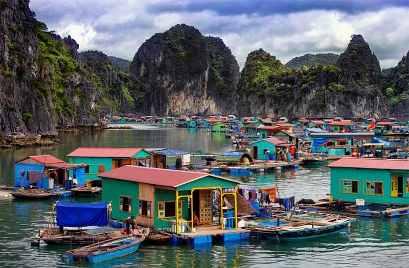 Cua Van Floating Fishing Village, Halong Bay, Vietnam (Halong Bay Floating Fishing Village)
