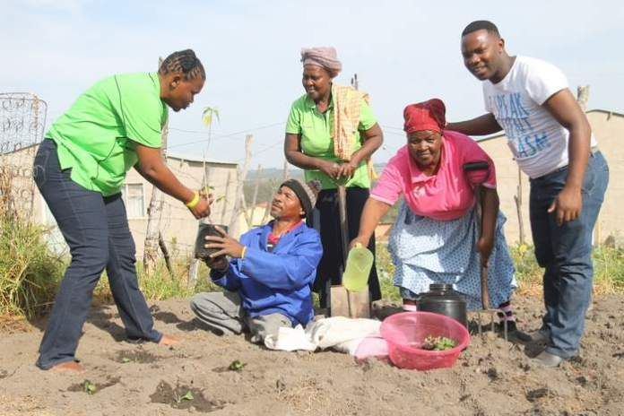 SEEDS OF HOPE:  Christina   Mdledle  (Cnristelike Maastskaplike Raad project coordinator), far left, gives seedlings to Queeny Dyantyi at his home in Chicken Farm, Reeston. Next to him are Lindelwa Socamangashe, Nontobeko Kata and Xolisani Busakwe ( CMR  field workers).  CMR  gave out seedlings and words of encouragement to disabled master farmers on Mandela Day Picture: SARAH KINGON