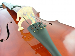 cello, photo shot from the base upwards
