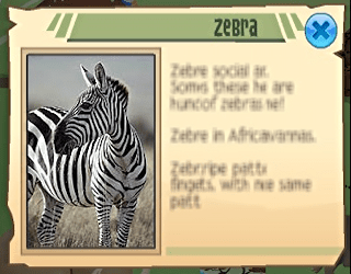 Animal Jam - info on the African zebra