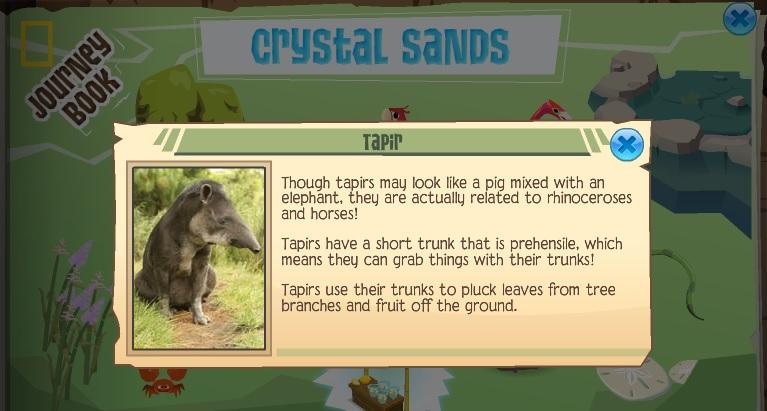 Animal Jam info: Malayan Malaysian Tapir