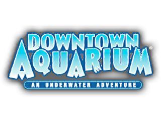 our visit to the denver downtown aquarium