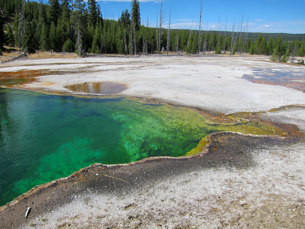 abyss spring, west thumb, yellowstone national park