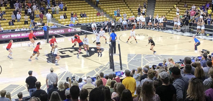 cu volleyball versus arizona