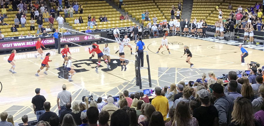cu volleyball versus arizona