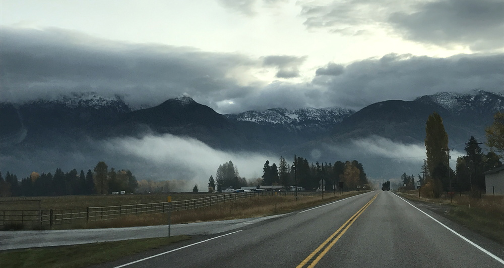 the foggy road ahead