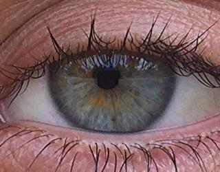 children's eye health vsp vision plan