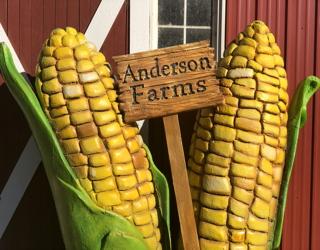 anderson farms 2018 erie co family fun autumn fall october halloween