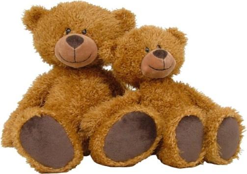 teddy bear best friends