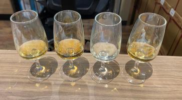 whisky samples tasting