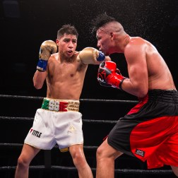 Vargas vs Herrera_12_15_2017_Fight_Pete Young _ Premier Boxing Champions12