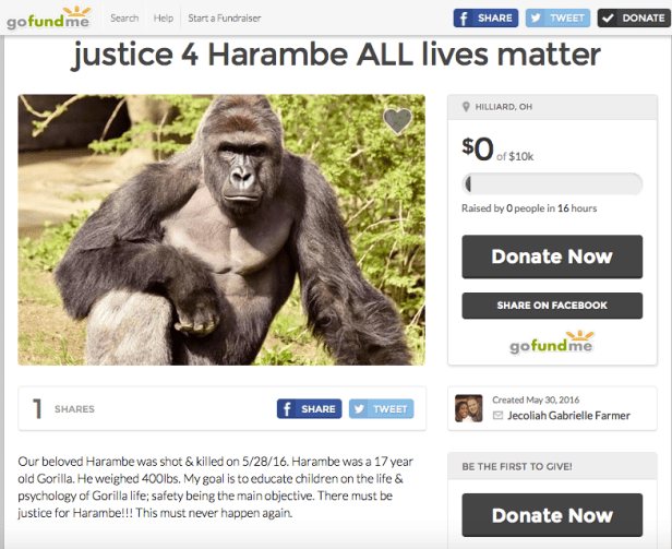 Justice for Harambe Gofundme