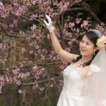 妊娠すると「おめでとう」よりも「要不要?」~中国人の結婚