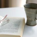 英語のリーディングスキルをあげるためのおすすめ本3冊