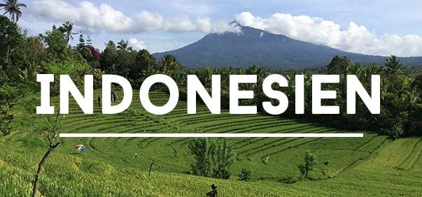 Reisetipps für Indonesien