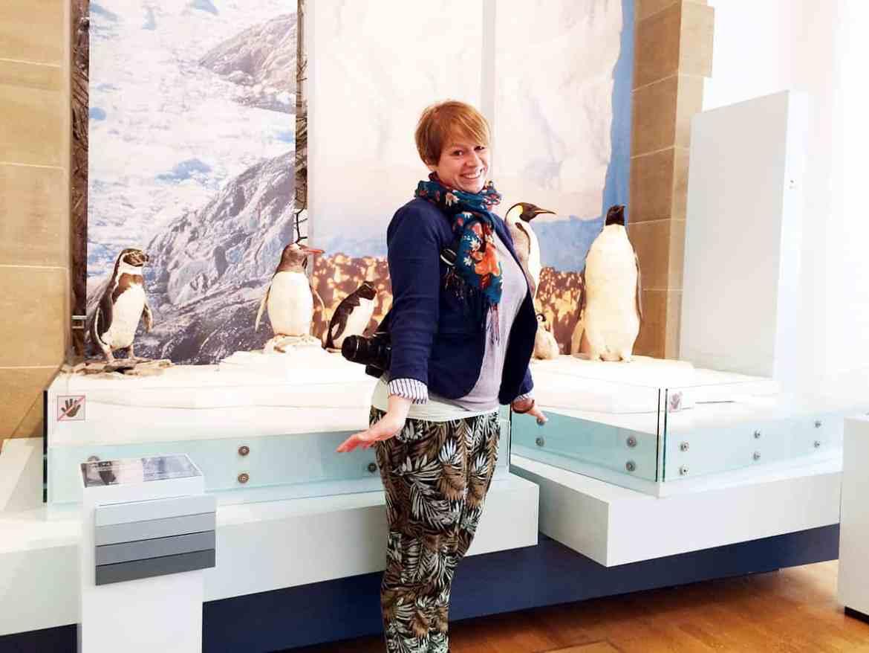 Museum Koenig