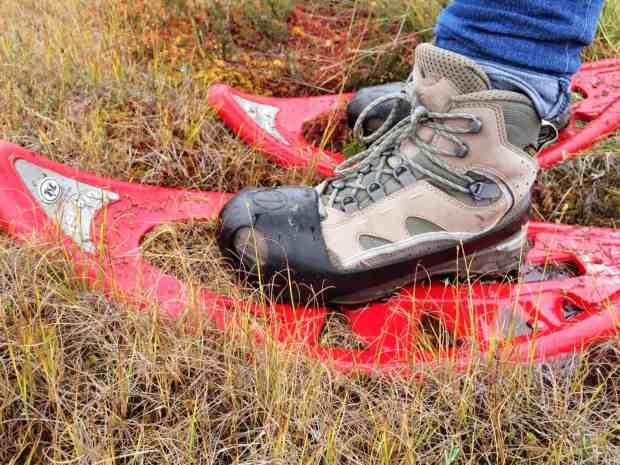 Moorschuhwandern im Soomaa Nationalpark