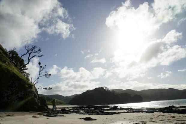 neuseeland-northland-beach