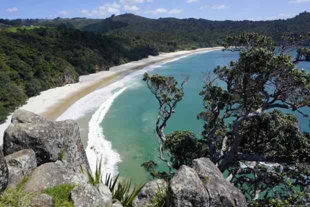 rundreise-neuseeland-coromandel-new-chums-beach-von-oben-2