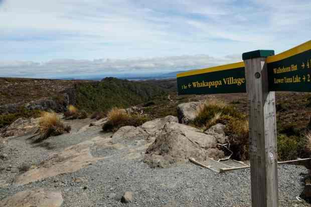 wandern-im-tongariro-nationalpark-15