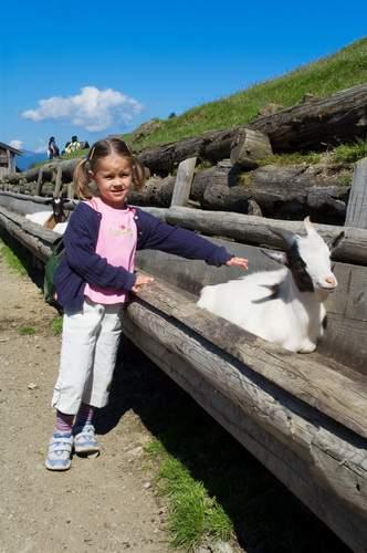 Kitzbühel, programma per bambini kitz4kids, Aurach (Wildpark), Tirolo
