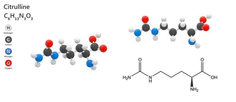 Citrulline - chemical structure