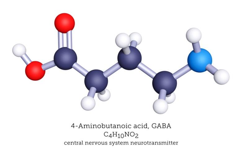 GABA - chemical formula