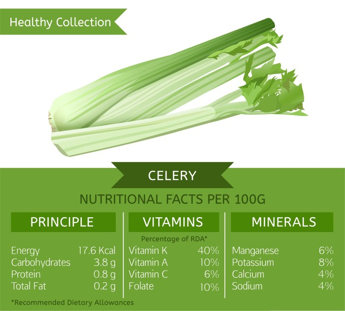 What does Celery contain - infographic